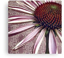 coneflower chic Canvas Print