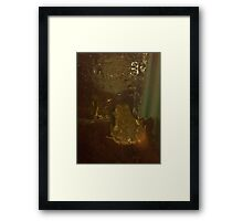 Two Frogs Meet Framed Print