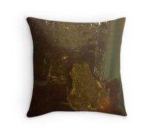 Two Frogs Meet Throw Pillow