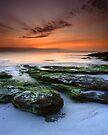 """""""Sanctuary"""" ∞ Vincentia, NSW - Australia by Jason Asher"""