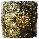Golden Sprinkes by Shaynelee