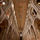 Ely Cathedral by LadyThegn