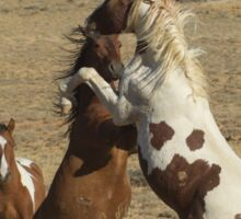 Wild Fighting Horses-Signed-2698 Sticker