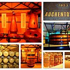 Auchentoshan Distillery by The Creative Minds