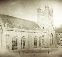 Black Abbey Kilkenny by Denise Abé