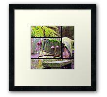 Forest Collage Framed Print