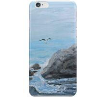 Dance of the Gulls iPhone Case/Skin