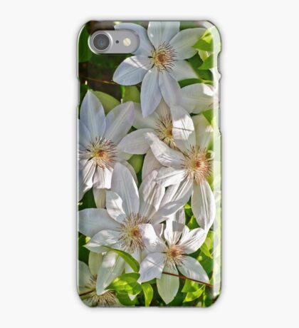 Coronation  iPhone Case/Skin