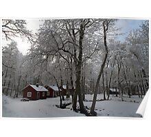 Snow in Småland, Värnamo, Sweden, EU Poster