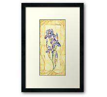 Retro Iris  Framed Print