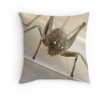 the eyes of a a cricket Throw Pillow