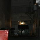 Dumpster Alley by Dean Mucha