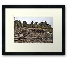 Turtle Rocks - Petite Jean State Park - Arkansas - USA Framed Print