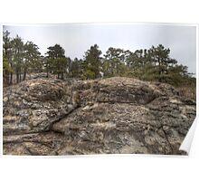 Turtle Rocks - Petite Jean State Park - Arkansas - USA Poster
