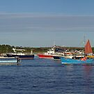 St Mary's Harbour Isles of Scilly by sbarnesphotos