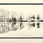 Misty morning in the park by Lenka