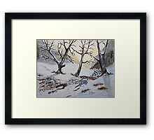 Winter Warmth Framed Print