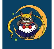 Sailor Totoro  Photographic Print