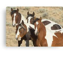 Painted Sisters-Signed-2603 Canvas Print