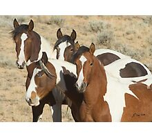 Painted Sisters-Signed-2603 Photographic Print