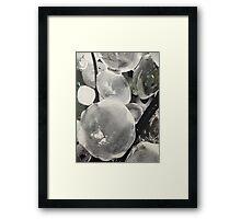 Hail Framed Print