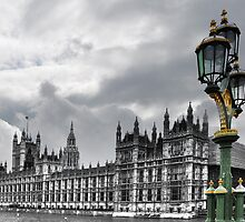 Houses Of Parliament, London by Steve Briscoe