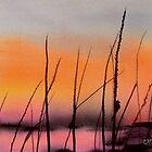 Robin's Sunset by chrisblevins