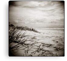 { sun, surf, sand } Canvas Print