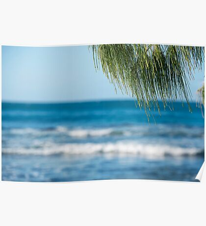 Beach in the afternoon. Poster