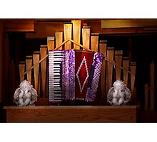 Instrument - Accordian - The accordian organ  Photographic Print