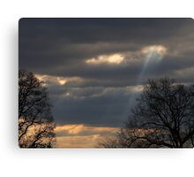 Angel Ladder Canvas Print