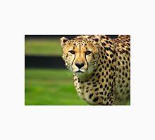 Cheetah - Face to Face - 38,585 Views T-Shirt
