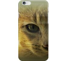 Community Cat iPhone Case/Skin