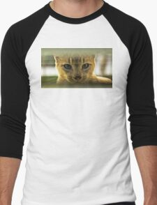 Community Cat Men's Baseball ¾ T-Shirt
