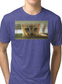 Community Cat Tri-blend T-Shirt