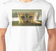Community Cat Unisex T-Shirt