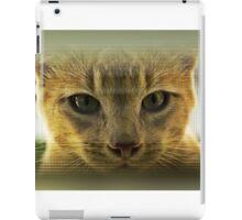 Community Cat iPad Case/Skin