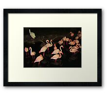 DISNEY FLAMINGOS Framed Print