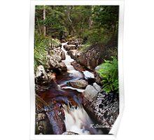 Gembrook falls Poster