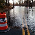 Road Floods [ understatement of the year.... ] by Jane Neill-Hancock
