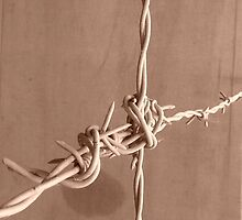 Barbed Wire by eramophla
