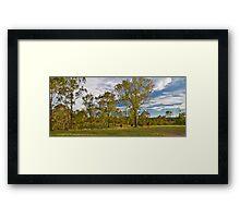 Meandering Cattle Framed Print
