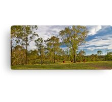 Meandering Cattle Canvas Print