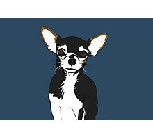Zoe the Chihuahua Cartoon Portrait Photographic Print