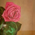 Rose and green glass by Karen  Betts