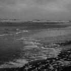 Winter Beach #10 by Remco den Hollander