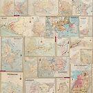 Suburban Sydney maps  by madewithslnsw