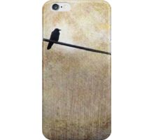 NIGHTFALL AND A CROW iPhone Case/Skin