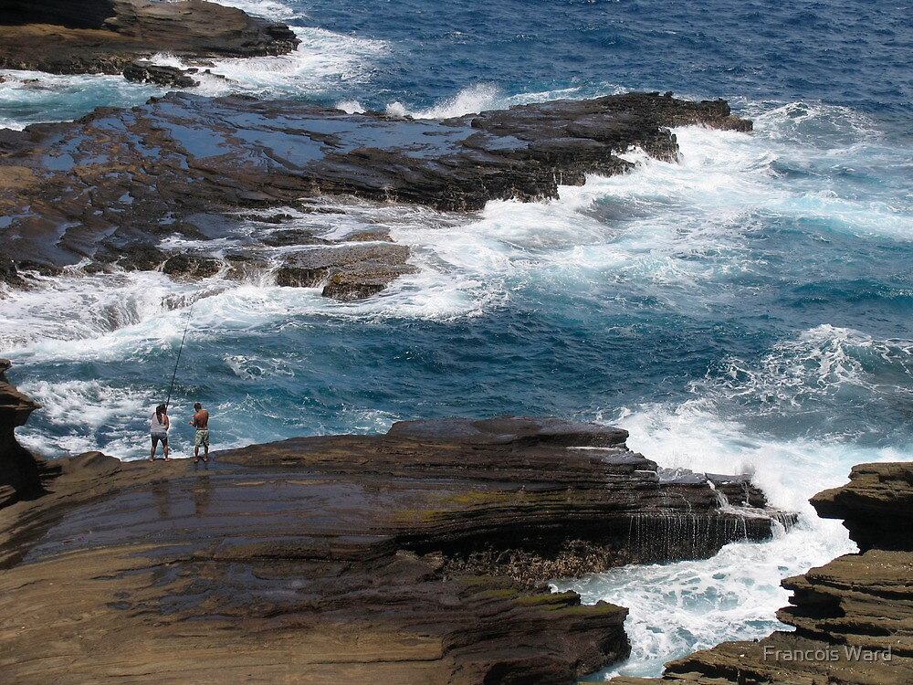 Big Island Waves, Hawaii 2011 by Francois Ward