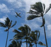 Vintage Plane Fly By, Heeia State Park, Oahu, Hawaii 2011 by Francois Ward